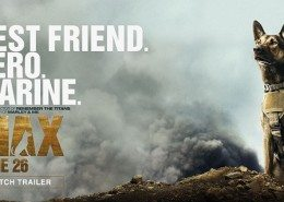 VFX supplementation Max movie